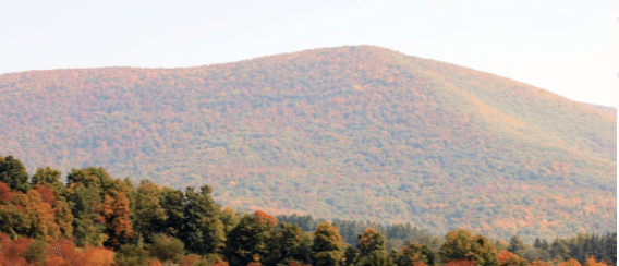 Fall Hiking in the Berkshires