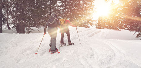 Hit the Trail with the Berkshires' Best Cross Country Skiing and Snowshoeing