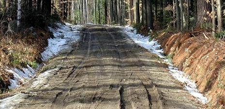 Survive Mud Season in the Berkshires
