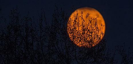Halloween Happenings in The Berkshires